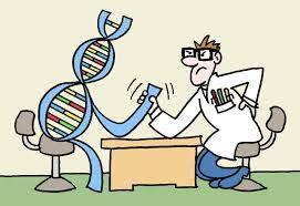 Psoriasi-ruolo della genetica